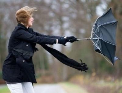 Посилиться вітер: синоптики попередили про погіршення погоди на Буковині
