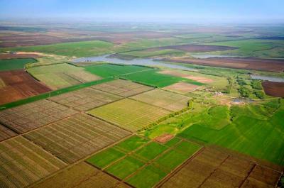 Земля подорожчає: скільки дадуть за гектар після відкриття ринку