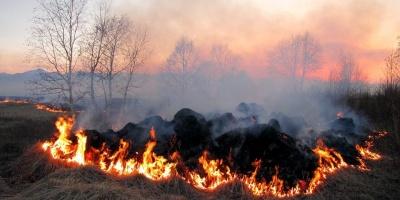 Рятувальники попередили про пожежну небезпеку на Буковині