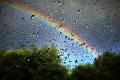 Заморозки і грозові дощі: погода в Україні та на Буковині цього тижня