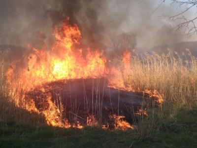 Рятувальники попереджають буковинців про пожежну небезпеку