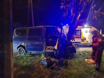 Нічна ДТП у Чернівцях: мікроавтобус врізався у дерево, водій був з ознаками сп'яніння