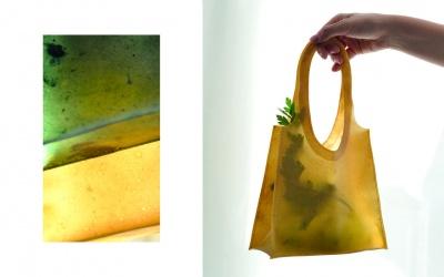 У Німеччині створили екологічні сумки з фруктової шкірки