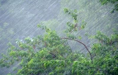 На Буковину насувається хвиля злив із грозами: з'явився свіжий прогноз