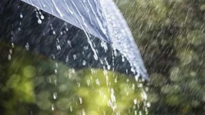На Буковину прийшла затяжна хвиля дощів і гроз: з'явився свіжий прогноз синоптиків