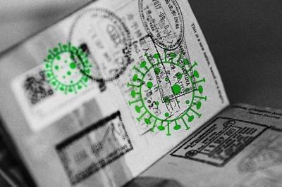 У «Слузі народу» пояснили найбільшу проблему в Україні, пов'язану із запуском Covid--паспортів