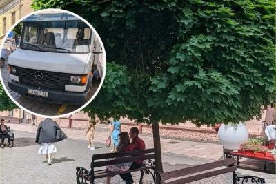 У Чернівцях на пішохідній вулиці вантажівка пошкодила дерево: водія оштрафували